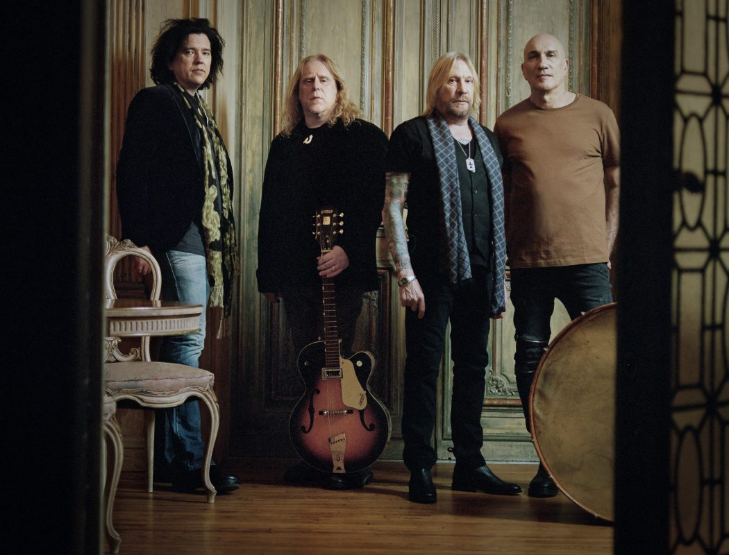 Gov't Mule by Courtney Lauck